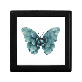 Green blue succulent butterfly silhouette gift box