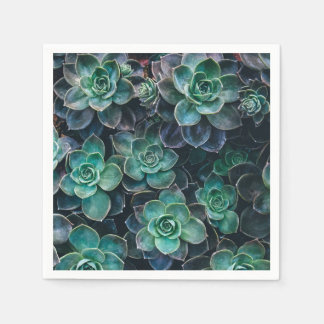 Green Blue Succulent Plants Disposable Napkin
