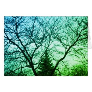 Green Blue Trees Beautiful Nature Card