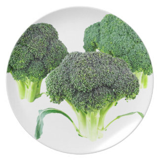 Green Broccoli Crowns on White Plate