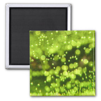 Green Bubbles Magnet
