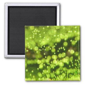 Green Bubbles Square Magnet