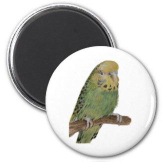 green budgie art magnet