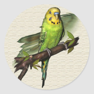 Green Budgie Stickers