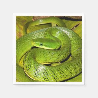 Green Bush Rat Snake Paper Napkin