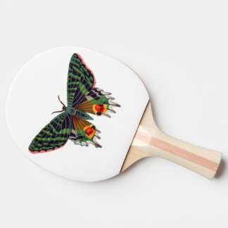 Green Butterfly -Ping Pong Paddle, Red Rubber Back Ping-Pong Paddle