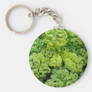Green cabbage basic round button keychain