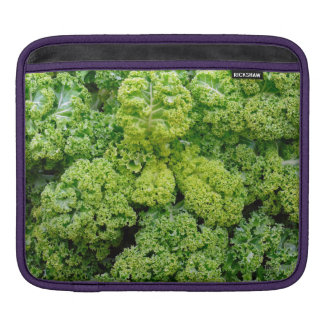 Green cabbage iPad sleeves