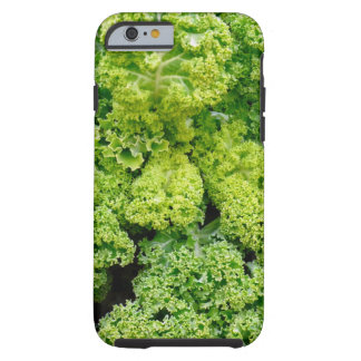 Green cabbage tough iPhone 6 case