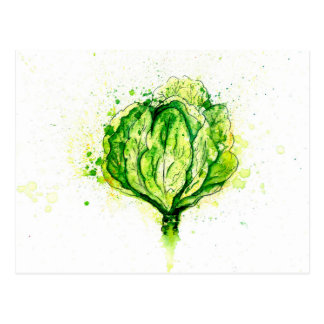 Green Cabbage Watercolor Postcard