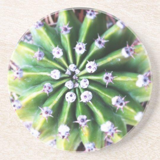 Green Cactus Coaster