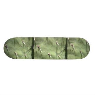 Green Cactus Custom Skateboard