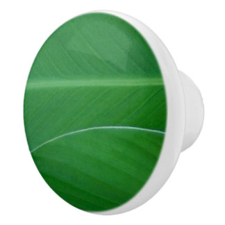 Green canna lily leaves photo ceramic knob