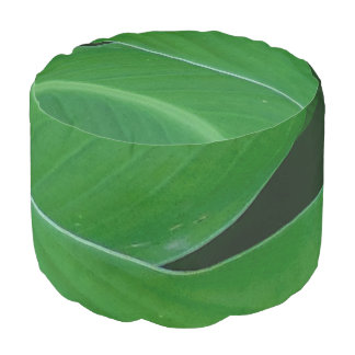 Green canna lily leaves photo pouf