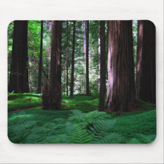 Green Carpet of the Redwoods Mouse Pad
