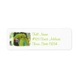Green Cheek Conure Parrot Mailing Label Return Address Label