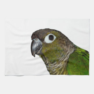 Green Cheeked Conure Hand Towels