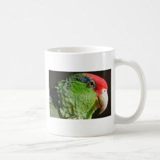 Green Cheeked Parrot Classic White Coffee Mug