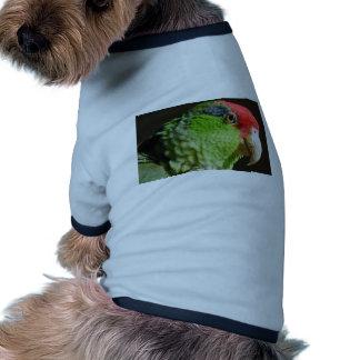 Green Cheeked Parrot Doggie T Shirt