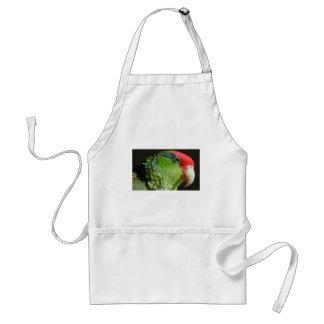 Green Cheeked Parrot Standard Apron