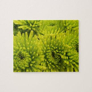Green Chrysanthemums Puzzle