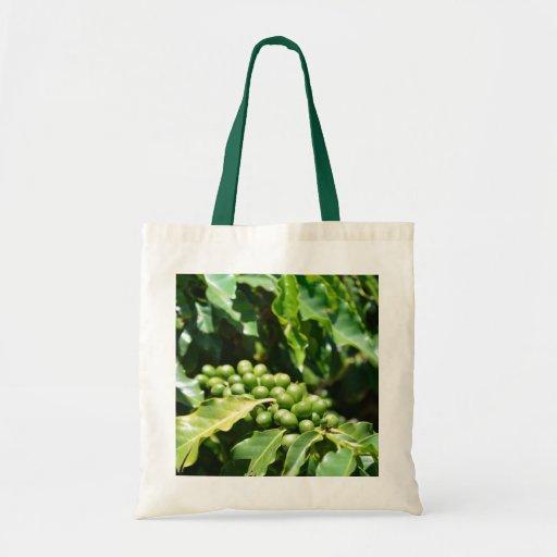 Green Coffee Berries Bag