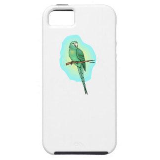 Green Conure Bird iPhone 5 Cases