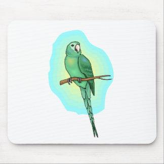Green Conure Bird Mousepad