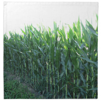 Green corn field on summer day printed napkins