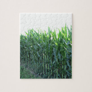 Green corn field on summer day puzzle