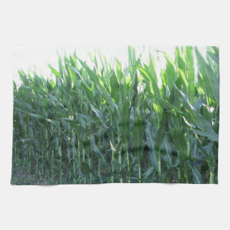 Green corn field on summer day towels