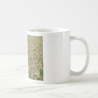 Green corn maize field in early stage coffee mug