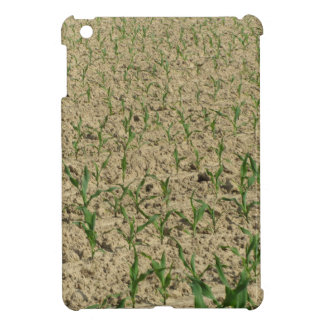 Green corn maize field in early stage iPad mini covers