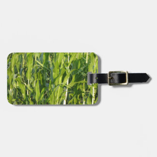 Green corn plants are growing in summer luggage tag