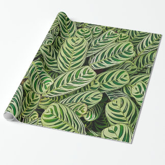 Green Cream and White Zebra Plants Wrapping Paper