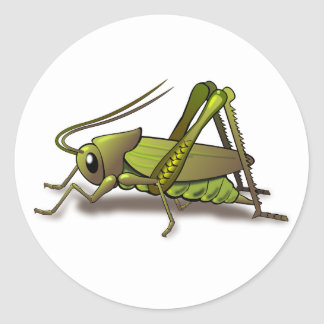 Green Cricket Insect Classic Round Sticker