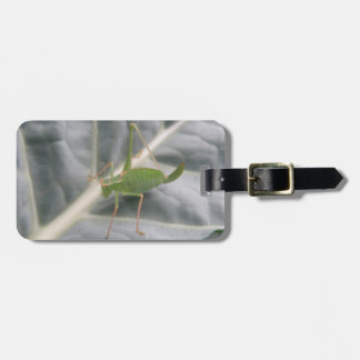 Green Cricket Macro Custom Luggage Tag