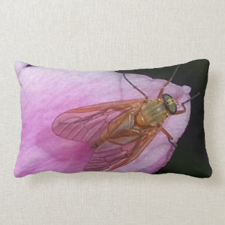 green cushion pink petal and snipe fly