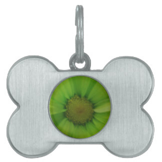 green daisy pet name tag