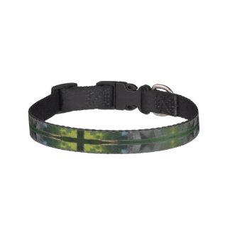 Green digital art small pet collar