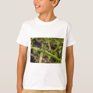 Green Eastern Pondhawk Dragonfly T-Shirt