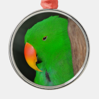Green eclectic parrot christmas ornament