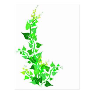 green eco vine postcard