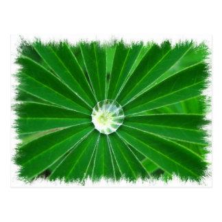 Green Energy  Postcard