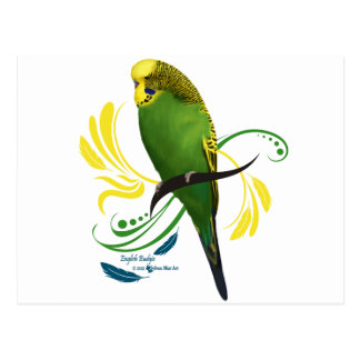 Green English Budgie Postcard