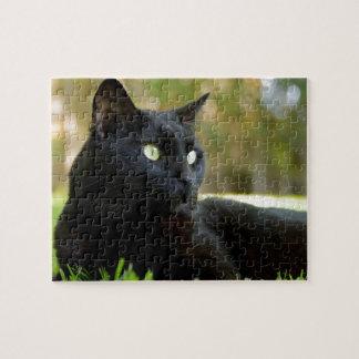 Green Eyed Black Cat Enjoying the Outdoors Puzzles