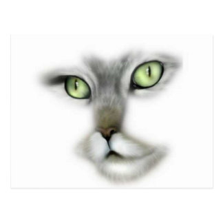Green Eyed Kitty Postcard