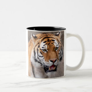 green eyed wonder Two-Tone coffee mug