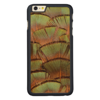 Green fanned Pheasant feather Carved Maple iPhone 6 Plus Case