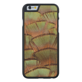 Green fanned Pheasant feather Carved® Maple iPhone 6 Slim Case